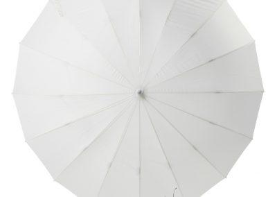 Paraplu (2)